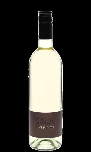 Gala Penina Sivi-pinot – belo peneče vino. Vinska fontana Vodole–posestvo Sončni raj
