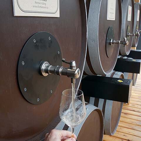 Vinska fontana Vodole – buteljčna vina. Mesni in sirni narezki. Posestvo Sončni raj.