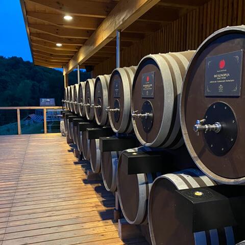 Bela in rdeča vina. Fontana vin Vodole – vinski bar s ponudbo vin in narezkov