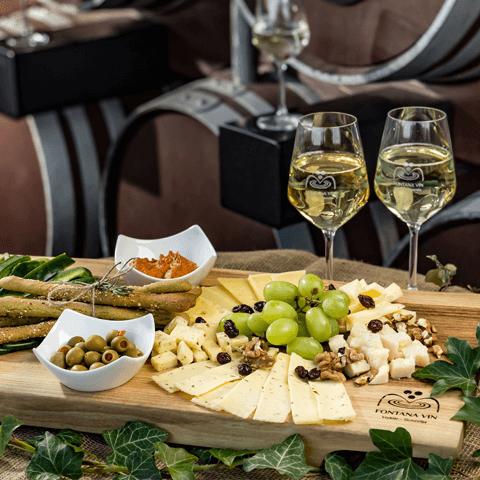 bela vina in rdeča vina – ponudba slovenskih vinarjev - Fontana vin Vodole – vinski bar s ponudbo vin in narezkov