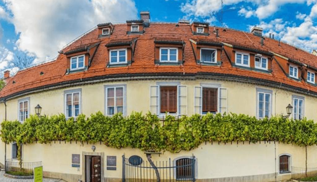 Fontana vin Vodole – stara vinska trta Maribor