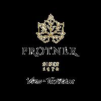 protner-vina-preview
